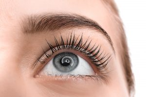 Optima Lash & Brow Design Course £250.00
